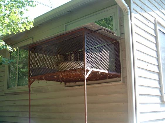 Custom fabricated enclosure for cat lover